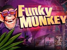 Игровой автомат Funky Monkey - играй без регистрации