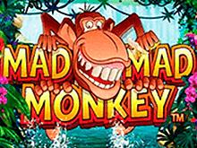 Игровой автомат Mad Mad Monkey - выиграй джекпот онлайн