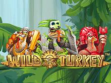 Игровой онлайн-автомат Wild Turkey